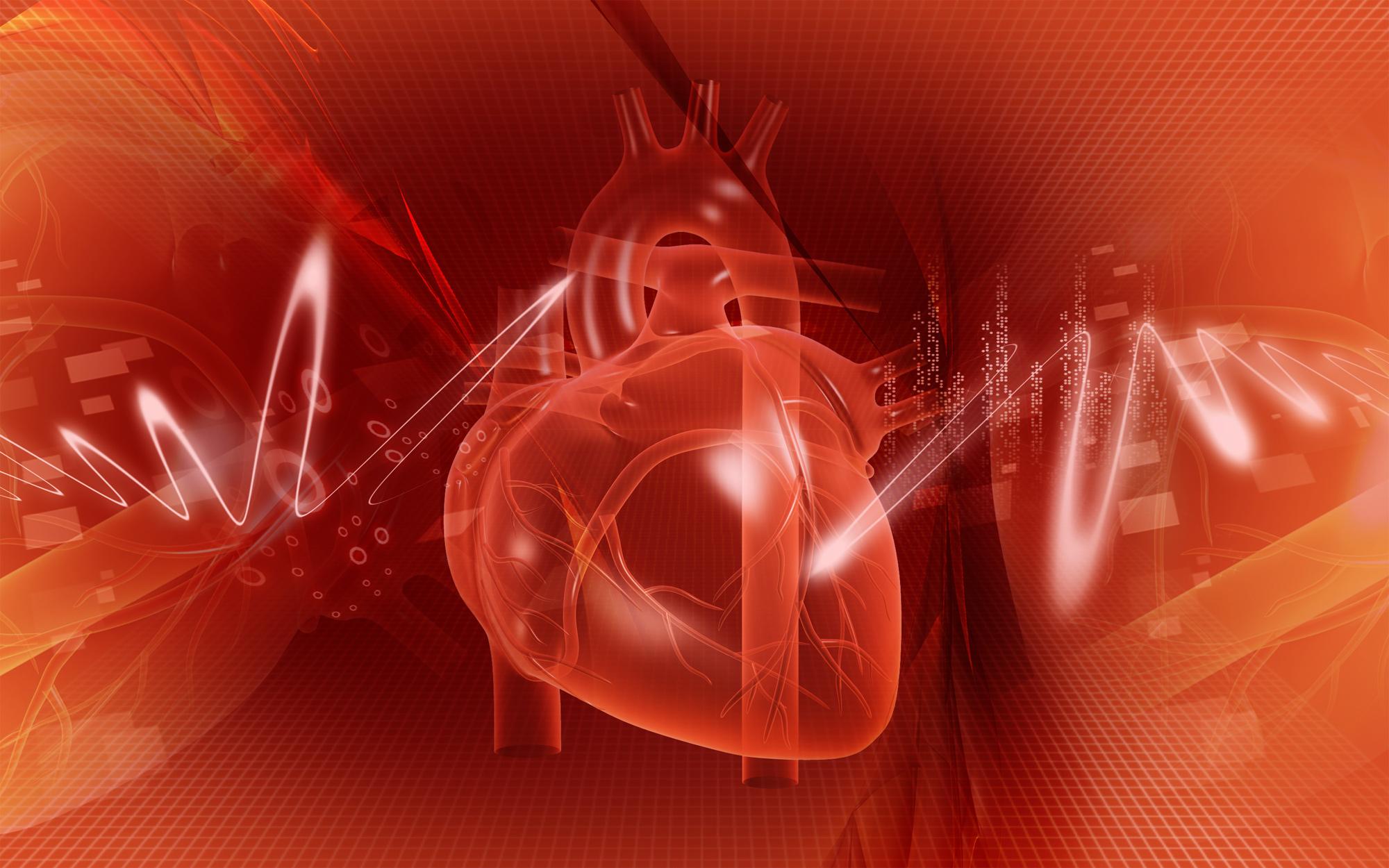 Asocjacja Intensywnej Terapii Kardiologicznej PTK